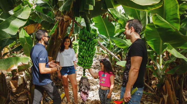 """Ganadores del concurso """"Saborea la vida, saborea las Islas Canarias"""" en una finca de plátanos"""