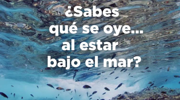 Captura de pantalla del vídeo realizado con motivo del Día Mundial de los Océanos, Islas Canarias