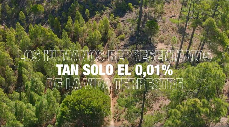 Islas Canarias celebra el Día de la Tierra mostrando los sorprendentes paisajes del archipiélago.
