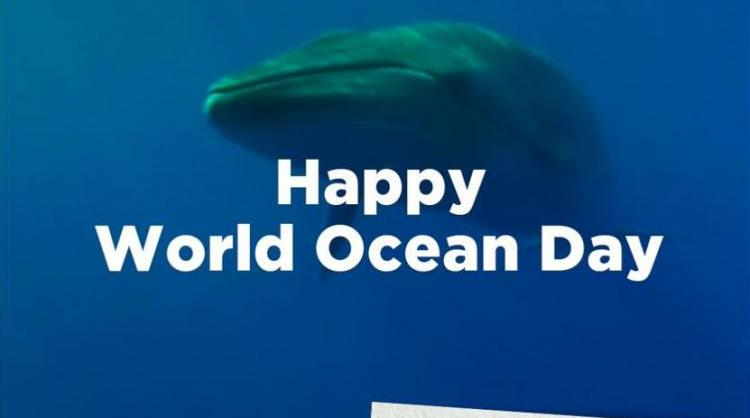 World Oceans Day, one of the dayketing campaigns carried out by Canary Islands